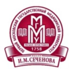 nodel-mr.ru